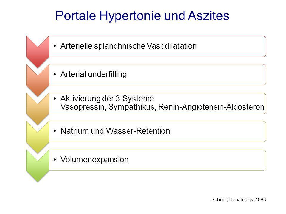 Portale Hypertonie und Aszites