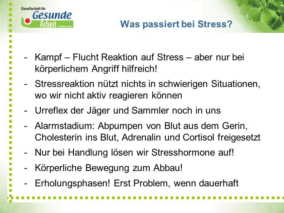 Was passiert bei Stress