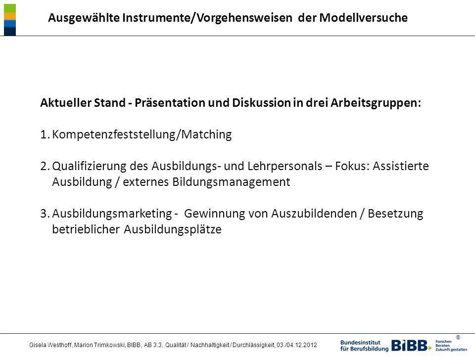 Ausgewählte Instrumente/Vorgehensweisen der Modellversuche
