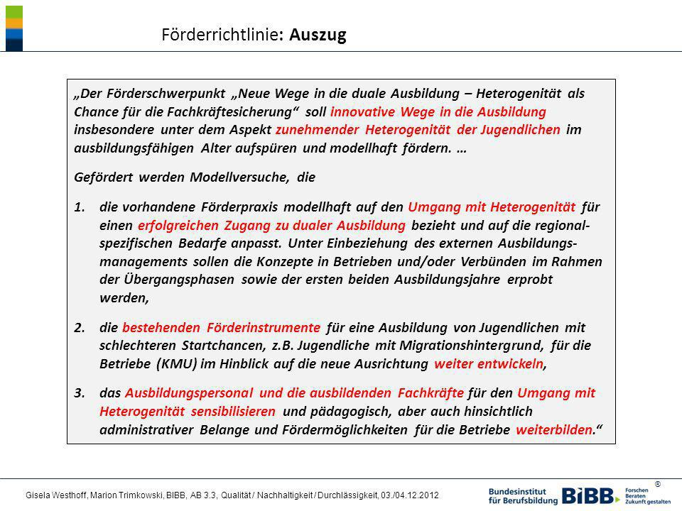 Förderrichtlinie: Auszug