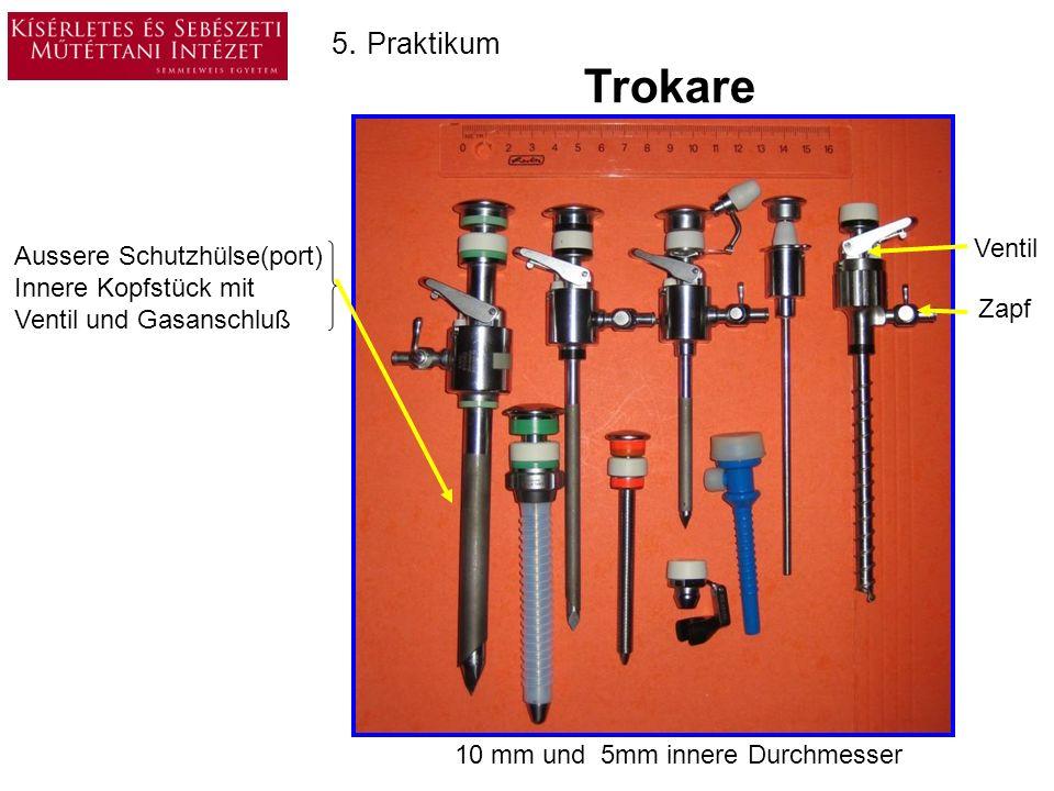 Trokare 5. Praktikum Ventil Aussere Schutzhülse(port)