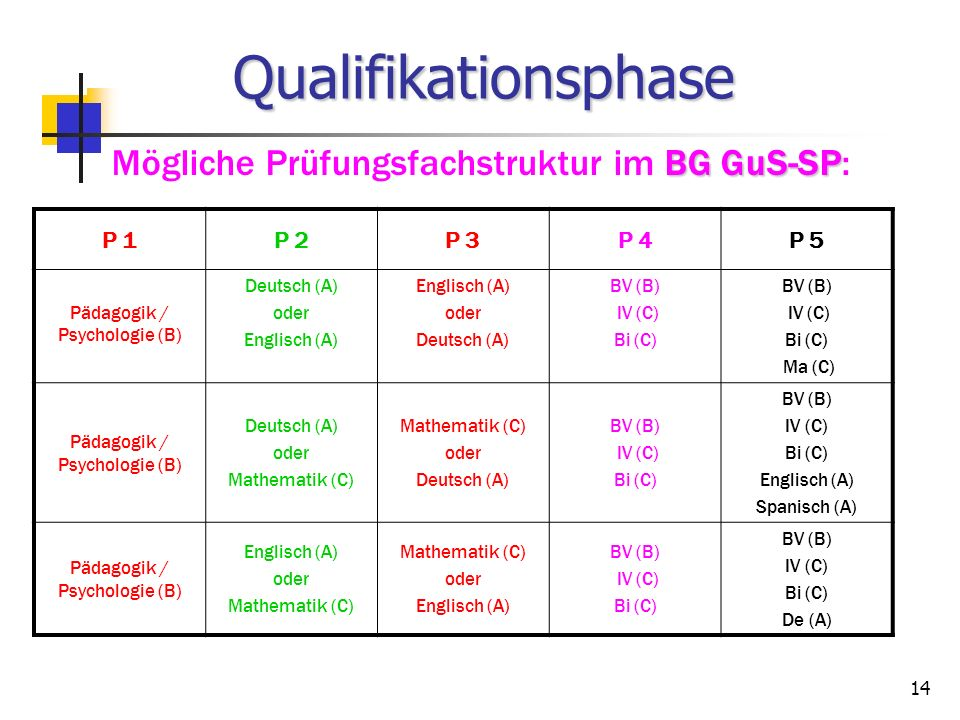 Qualifikationsphase Mögliche Prüfungsfachstruktur im BG GuS-SP: P 1