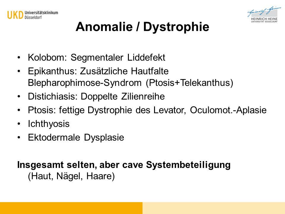 Anomalie / Dystrophie Kolobom: Segmentaler Liddefekt