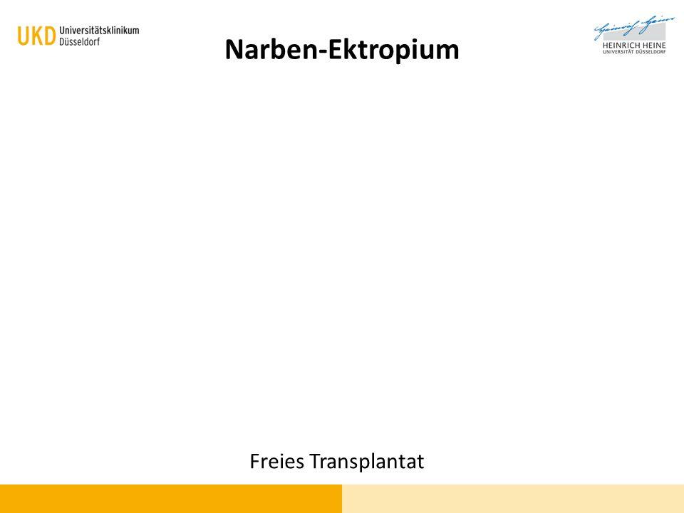Narben-Ektropium Freies Transplantat