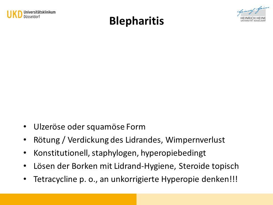 Blepharitis Ulzeröse oder squamöse Form