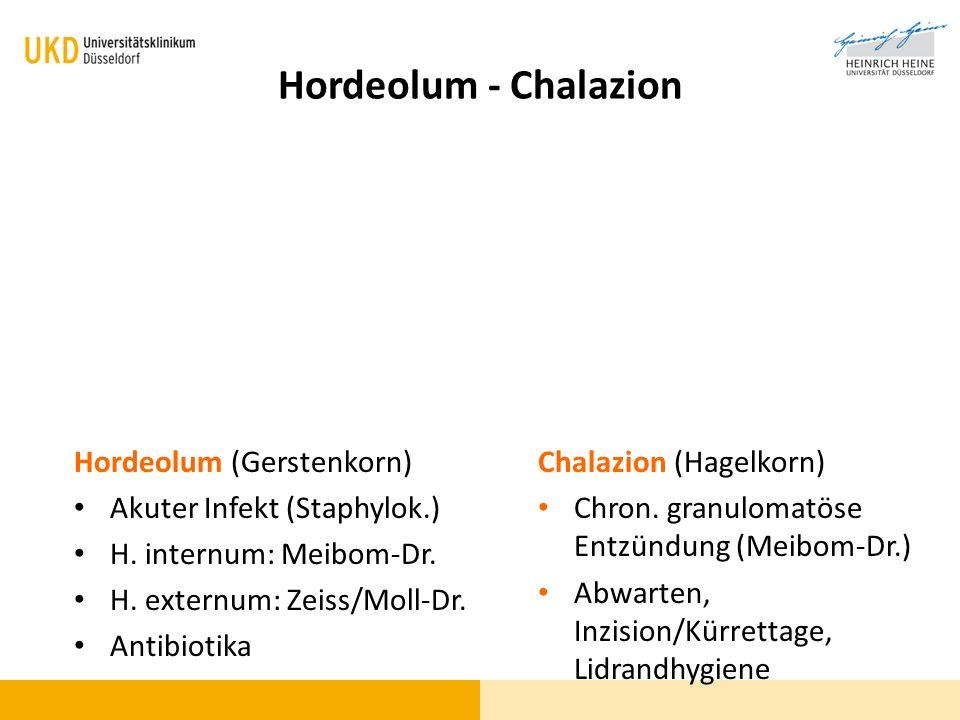 Hordeolum - Chalazion Hordeolum (Gerstenkorn)