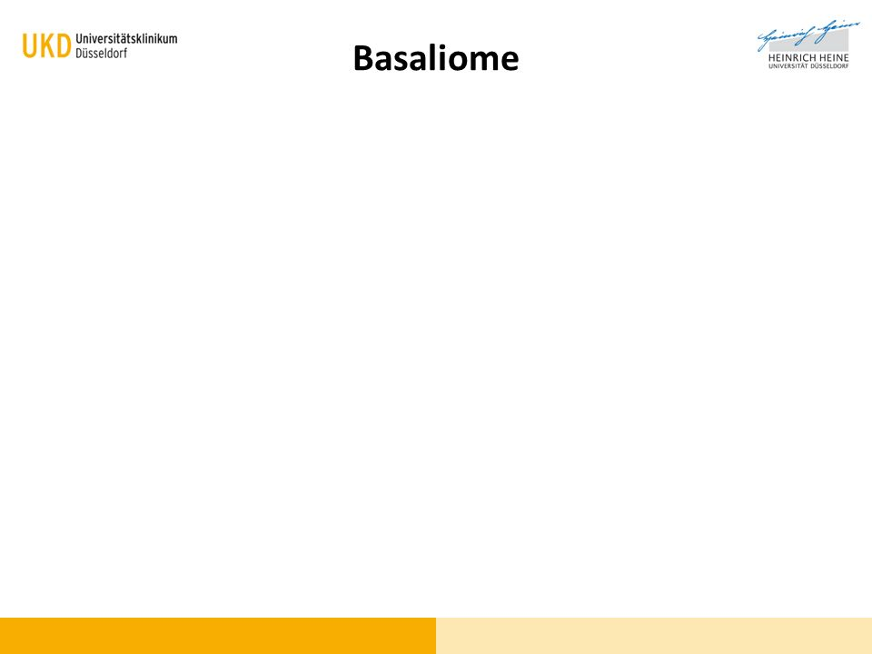 Basaliome