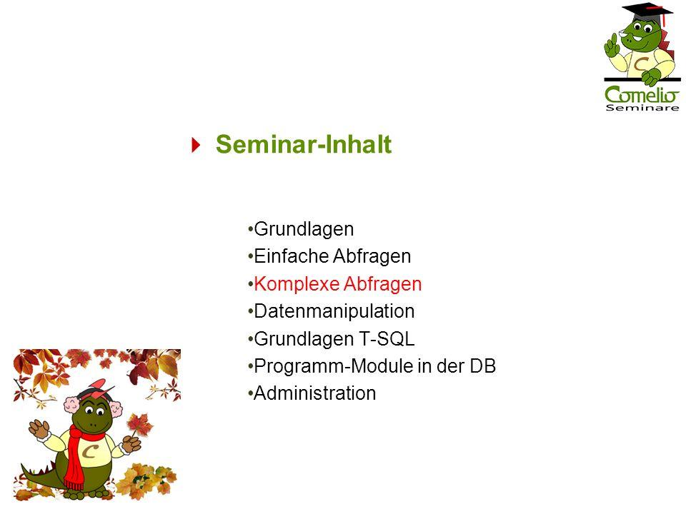  Seminar-Inhalt Grundlagen Einfache Abfragen Komplexe Abfragen
