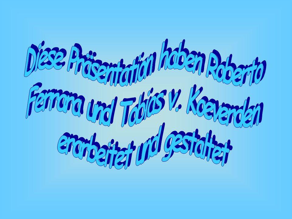 Diese Präsentation haben Roberto Ferrara und Tobias v. Koeverden