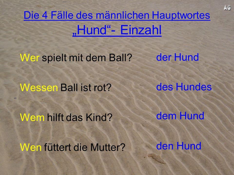 """Die 4 Fälle des männlichen Hauptwortes """"Hund - Einzahl"""