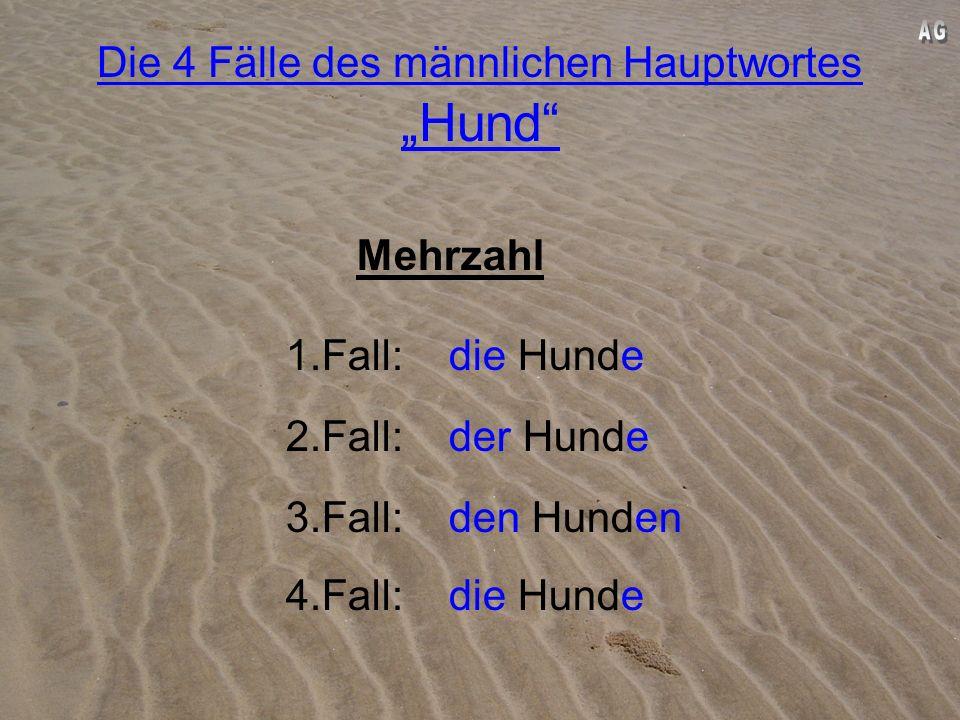 """Die 4 Fälle des männlichen Hauptwortes """"Hund"""