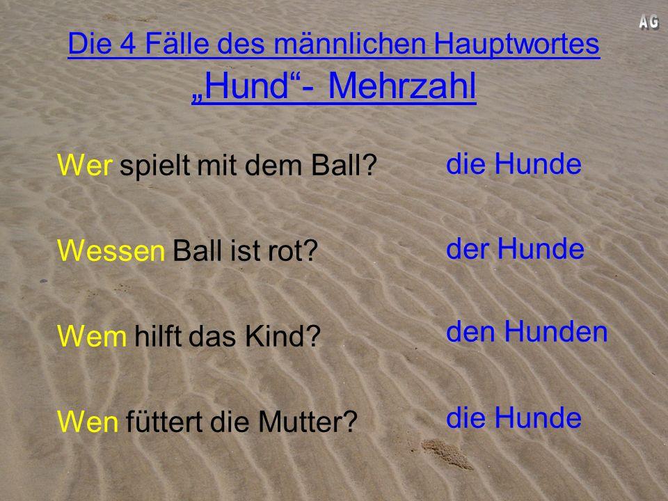 """Die 4 Fälle des männlichen Hauptwortes """"Hund - Mehrzahl"""