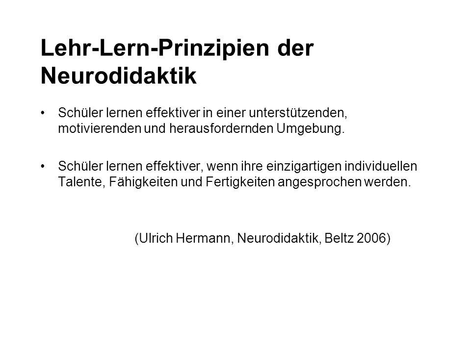 Lehr-Lern-Prinzipien der Neurodidaktik