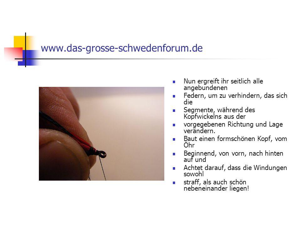 www.das-grosse-schwedenforum.de Nun ergreift ihr seitlich alle angebundenen. Federn, um zu verhindern, das sich die.