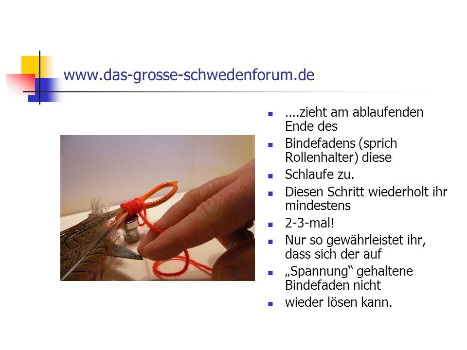 www.das-grosse-schwedenforum.de ….zieht am ablaufenden Ende des