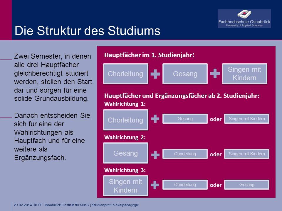 Die Struktur des Studiums