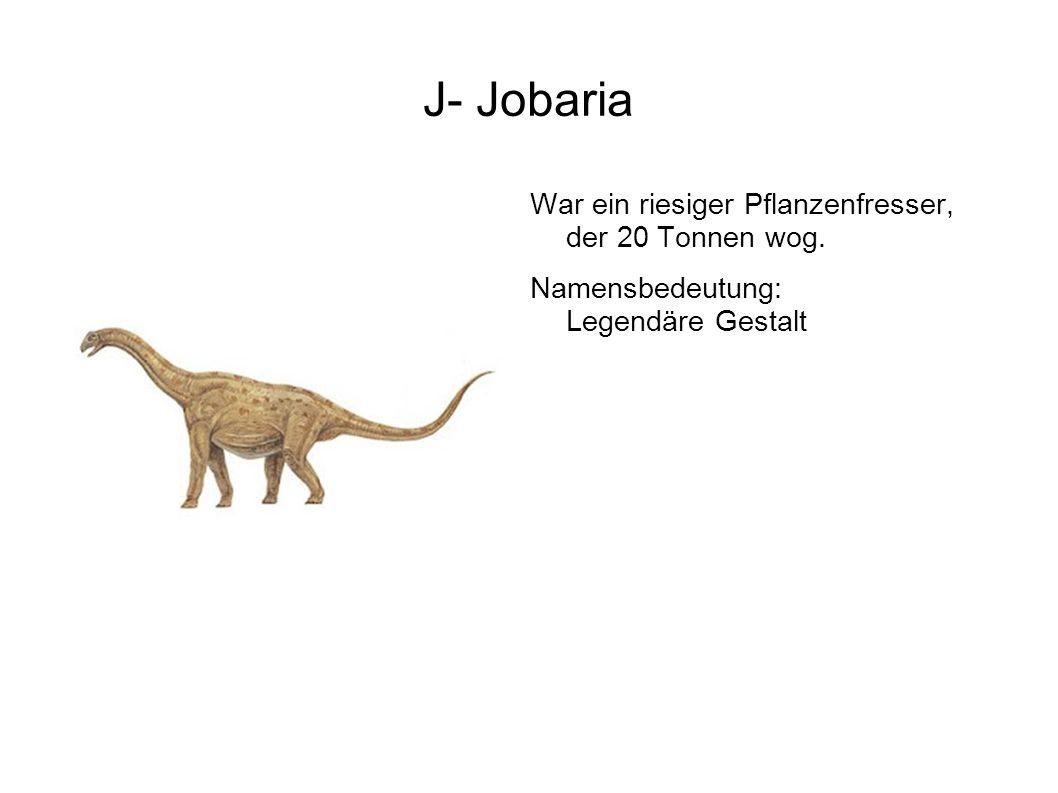 J- Jobaria War ein riesiger Pflanzenfresser, der 20 Tonnen wog.