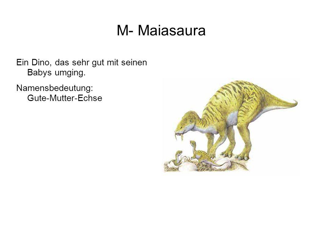 M- Maiasaura Ein Dino, das sehr gut mit seinen Babys umging.