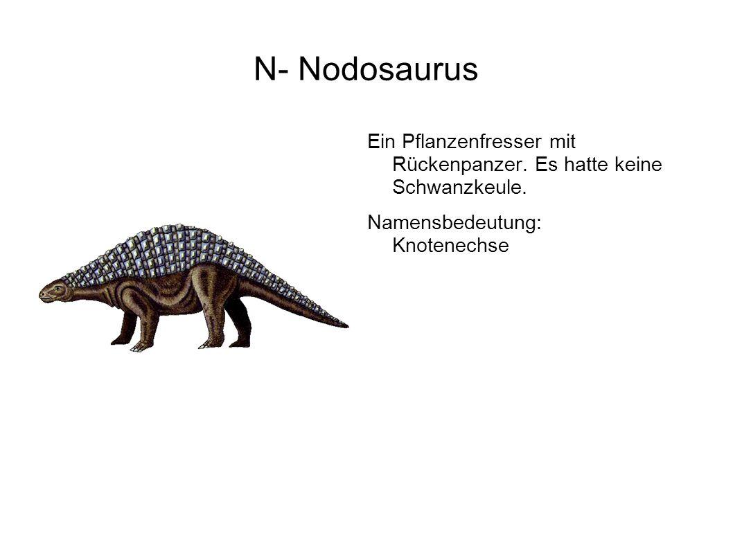 N- Nodosaurus Ein Pflanzenfresser mit Rückenpanzer.