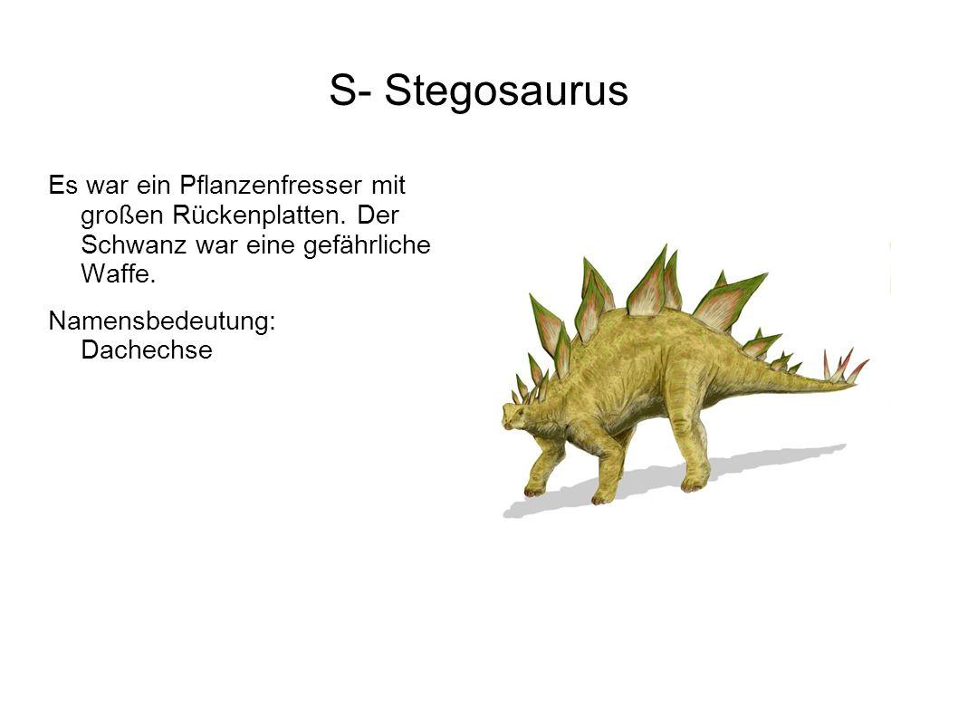S- Stegosaurus Es war ein Pflanzenfresser mit großen Rückenplatten. Der Schwanz war eine gefährliche Waffe.
