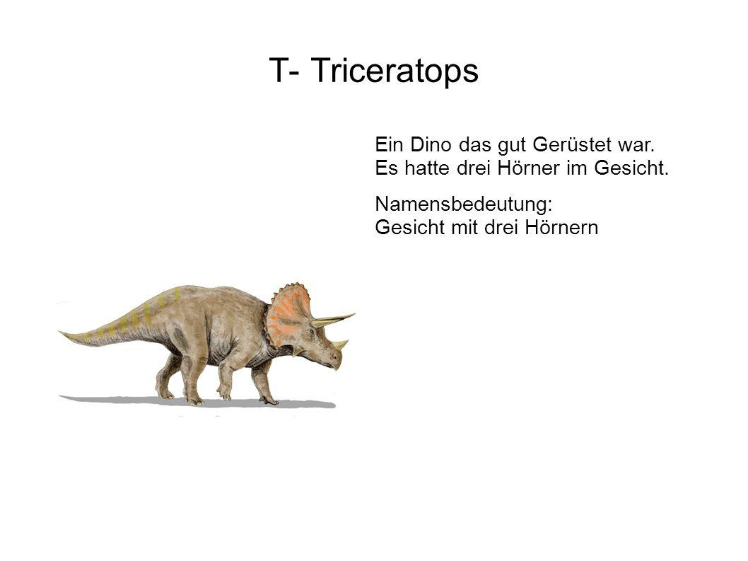 T- Triceratops Ein Dino das gut Gerüstet war. Es hatte drei Hörner im Gesicht.