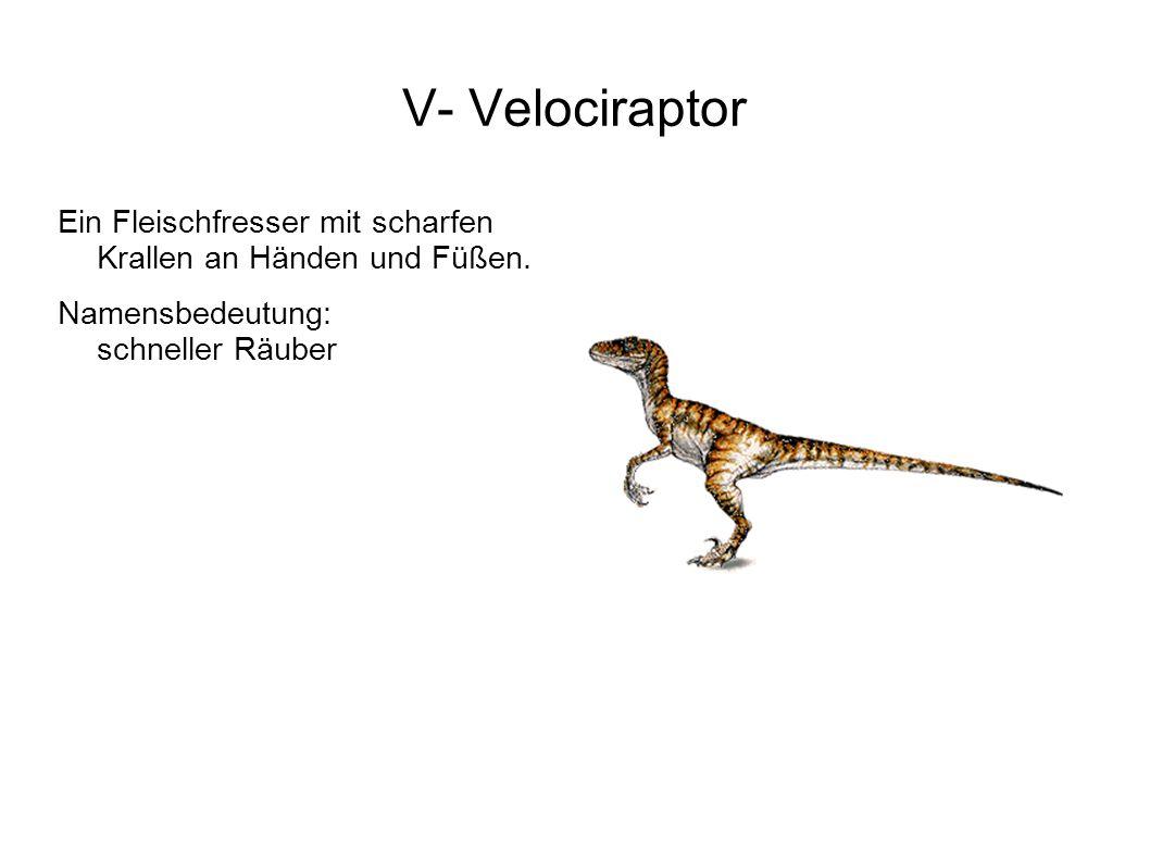 V- Velociraptor Ein Fleischfresser mit scharfen Krallen an Händen und Füßen.