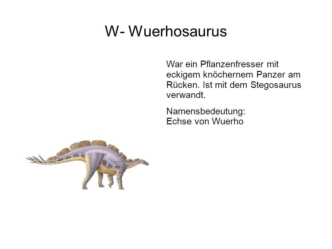 W- Wuerhosaurus War ein Pflanzenfresser mit eckigem knöchernem Panzer am Rücken. Ist mit dem Stegosaurus verwandt.