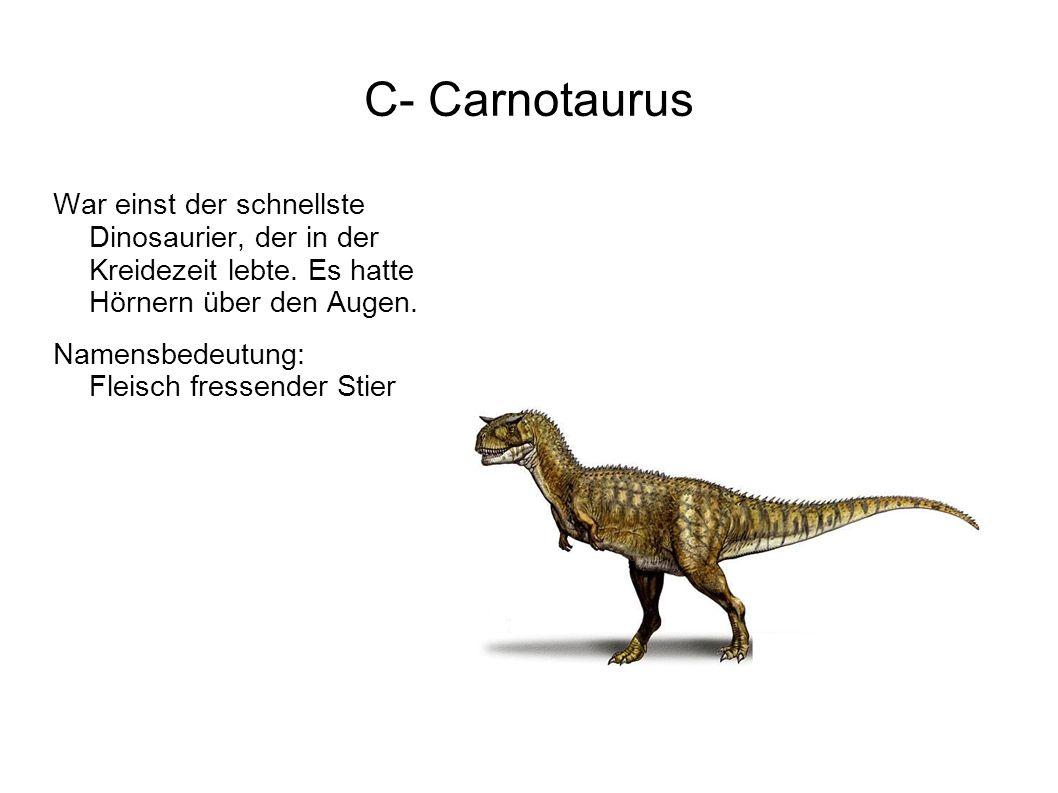 C- Carnotaurus War einst der schnellste Dinosaurier, der in der Kreidezeit lebte. Es hatte Hörnern über den Augen.