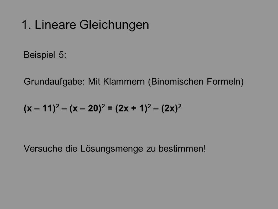 1. Lineare Gleichungen Beispiel 5: