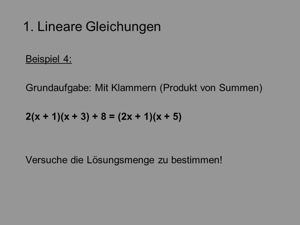 1. Lineare Gleichungen Beispiel 4: