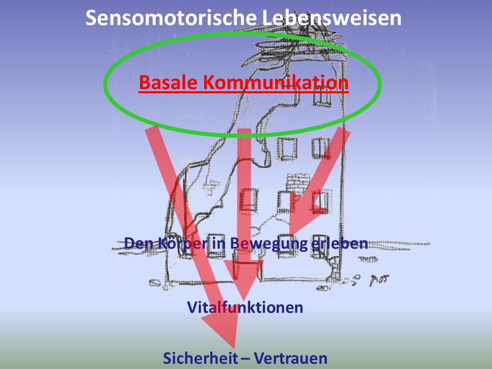 Sensomotorische Lebensweisen