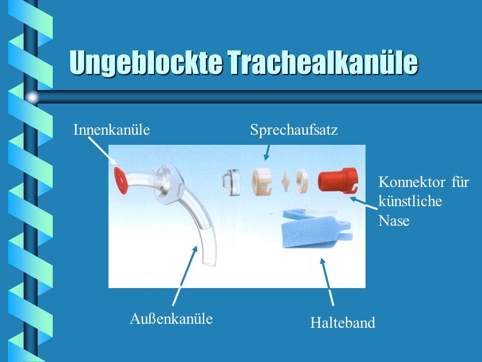 Ungeblockte Trachealkanüle