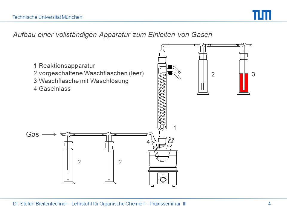 Aufbau einer vollständigen Apparatur zum Einleiten von Gasen