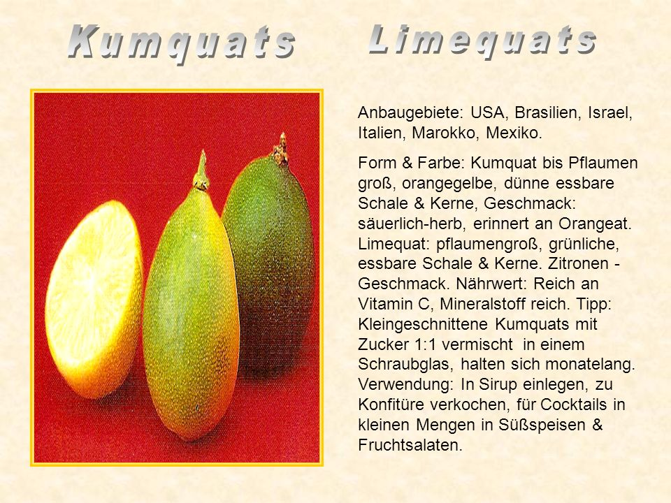 Kumquats Limequats. Anbaugebiete: USA, Brasilien, Israel, Italien, Marokko, Mexiko.