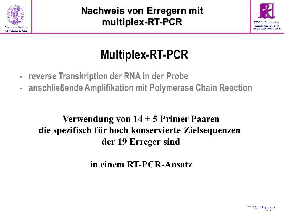 Multiplex-RT-PCR Nachweis von Erregern mit multiplex-RT-PCR