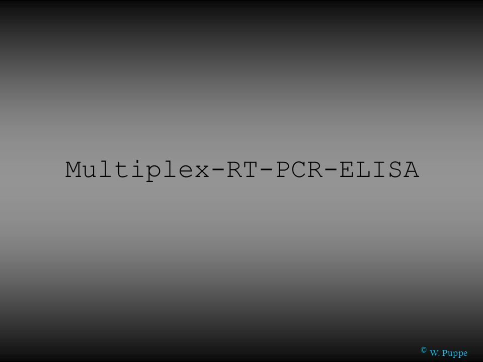 Multiplex-RT-PCR-ELISA