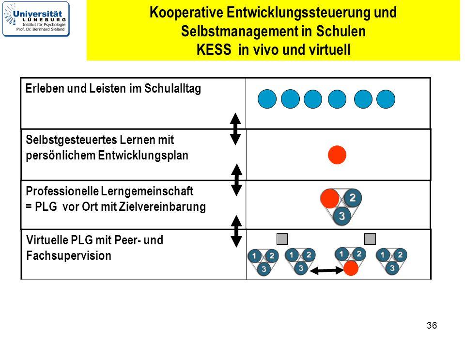 Kooperative Entwicklungssteuerung und Selbstmanagement in Schulen