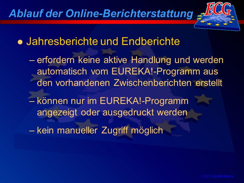 Ablauf der Online-Berichterstattung