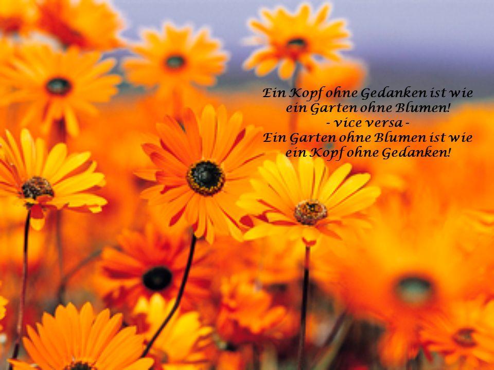 Ein Kopf ohne Gedanken ist wie ein Garten ohne Blumen