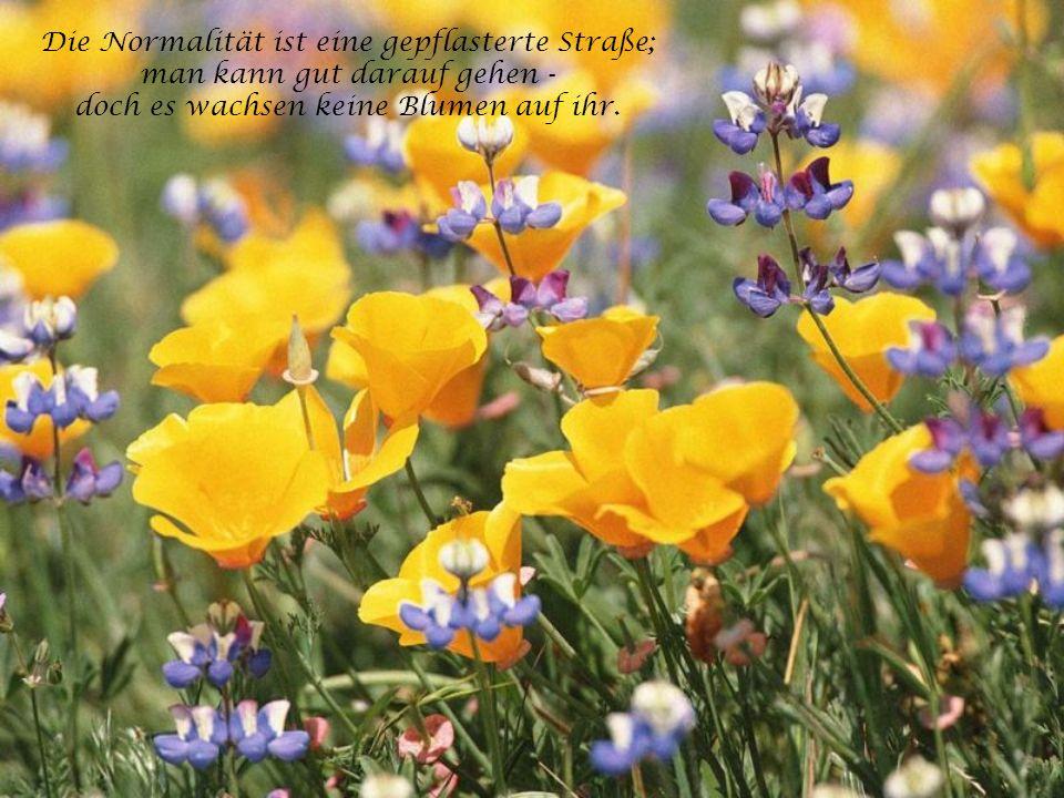 Die Normalität ist eine gepflasterte Straße; man kann gut darauf gehen - doch es wachsen keine Blumen auf ihr.
