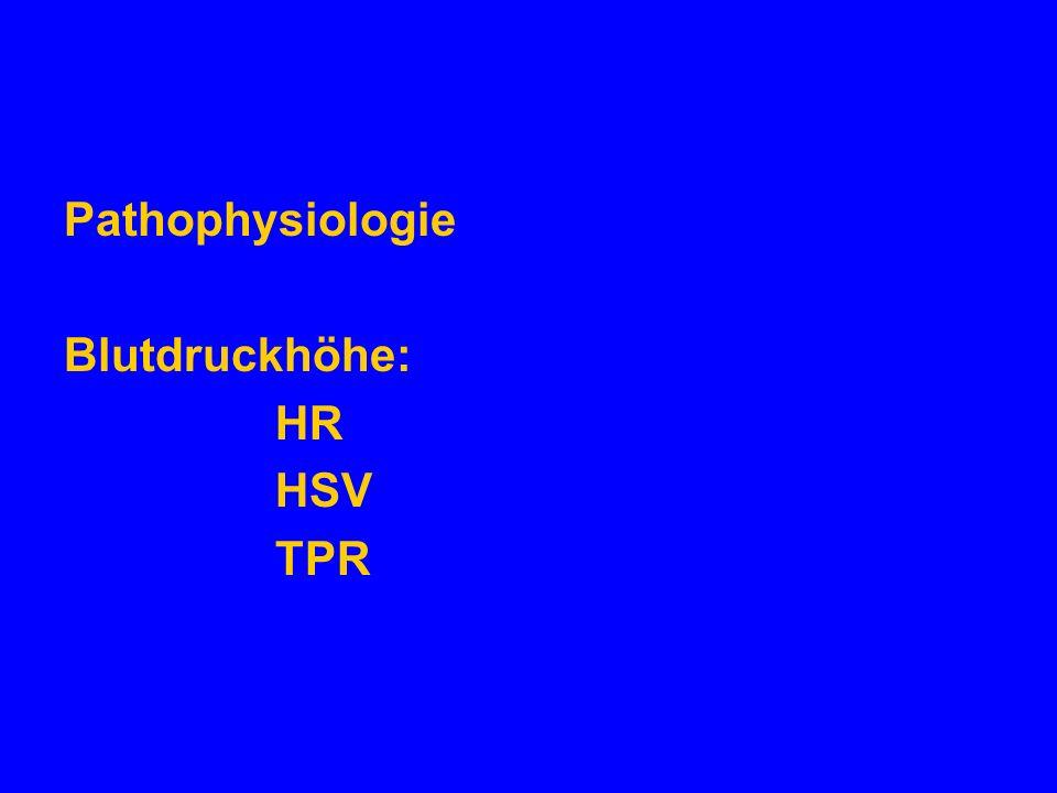 Pathophysiologie Blutdruckhöhe: HR HSV TPR