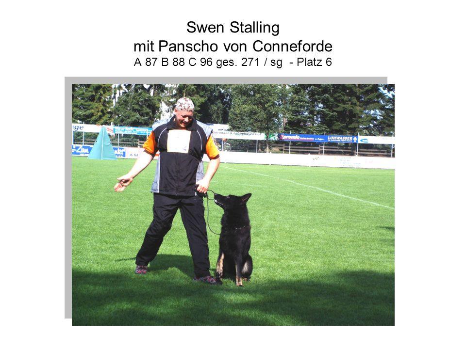 Swen Stalling mit Panscho von Conneforde A 87 B 88 C 96 ges