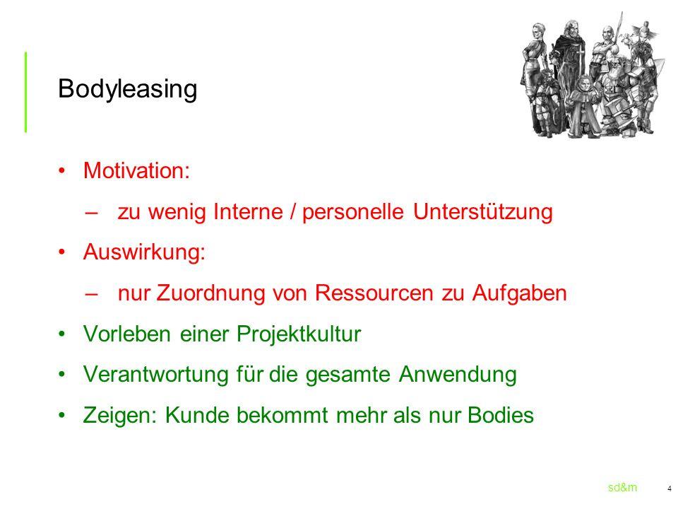 Bodyleasing Motivation: zu wenig Interne / personelle Unterstützung