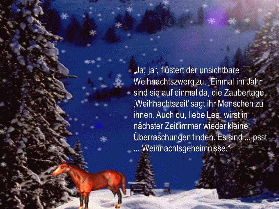 """""""Ja, ja , flüstert der unsichtbare Weihnachtszwerg zu"""