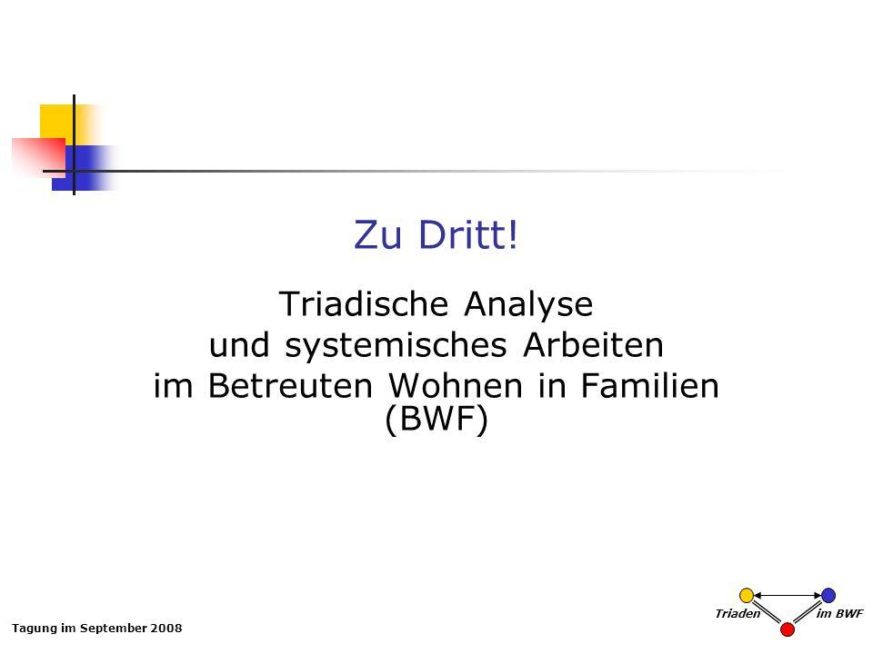 Zu Dritt! Triadische Analyse und systemisches Arbeiten