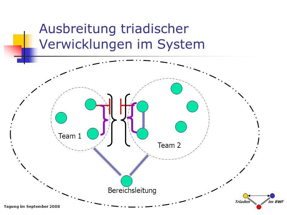 Ausbreitung triadischer Verwicklungen im System