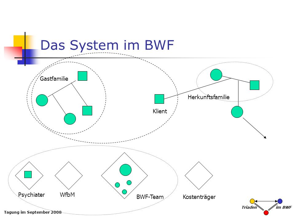 Das System im BWF Gastfamilie Herkunftsfamilie Klient Psychiater WfbM