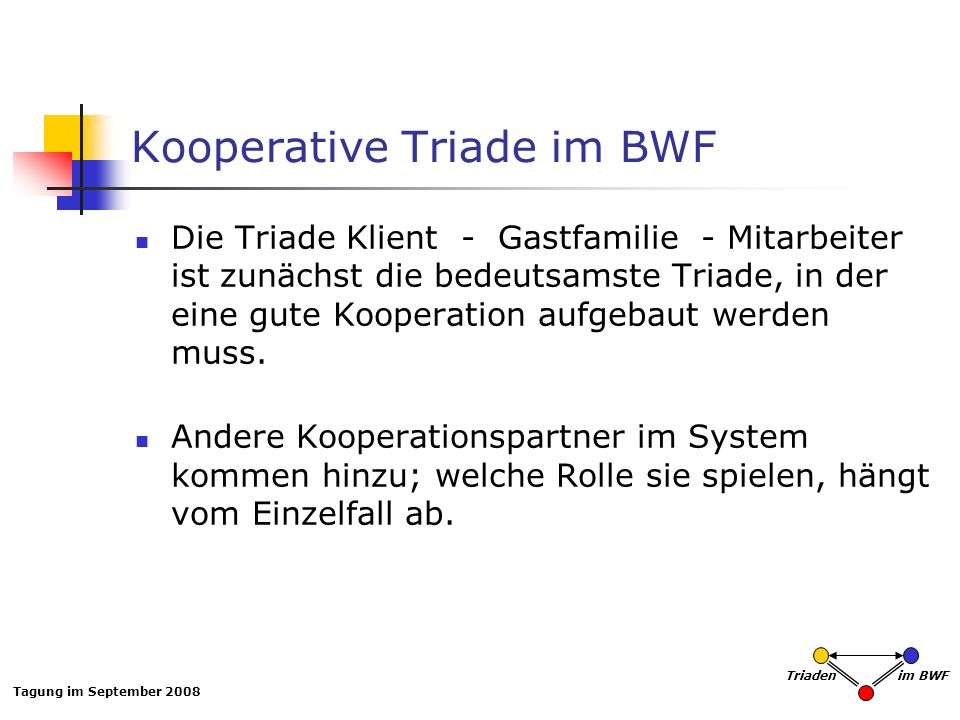 Kooperative Triade im BWF