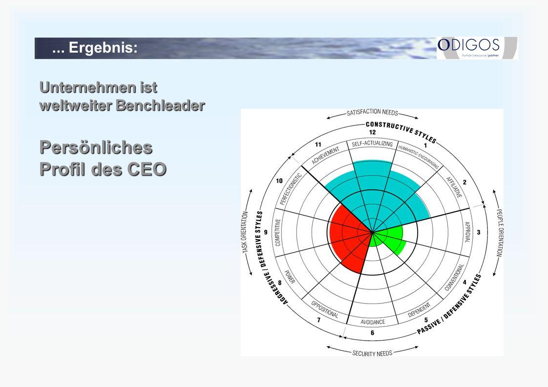 Persönliches Profil des CEO ... Ergebnis: Unternehmen ist