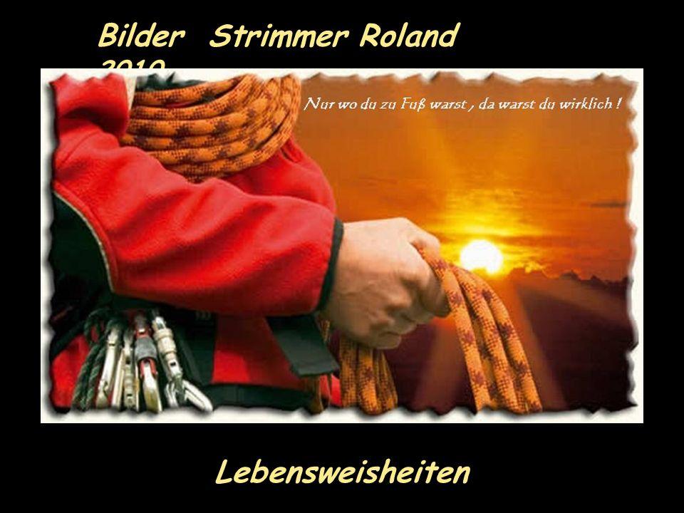 Bilder Strimmer Roland 2010